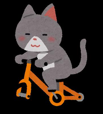 自転車に乗ってる猫